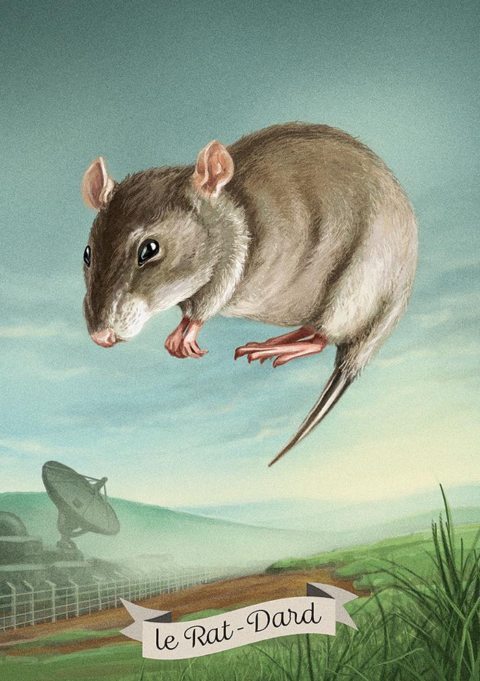 le rat-dard